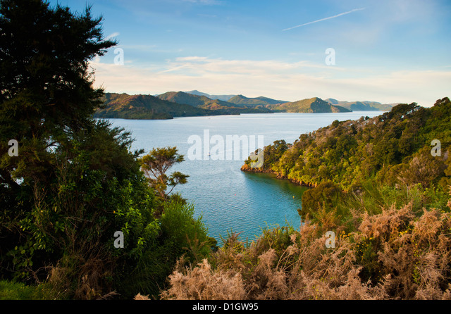 View of a sailing boat in the Queen Charlotte Sound, South Island, New Zealand, Pacific - Stock-Bilder