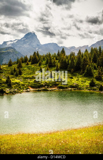 Lake in grassy rural landscape - Stock Image