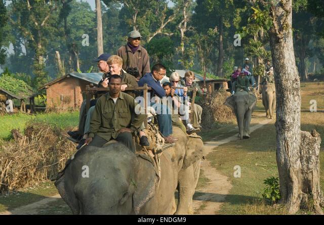 elephant crew casino