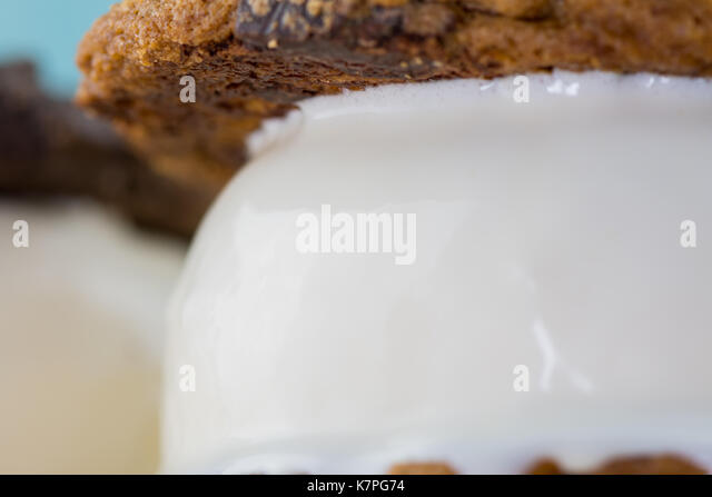 Close Up of Ice Cream in Cookie Sandwich Melts - Stock Image
