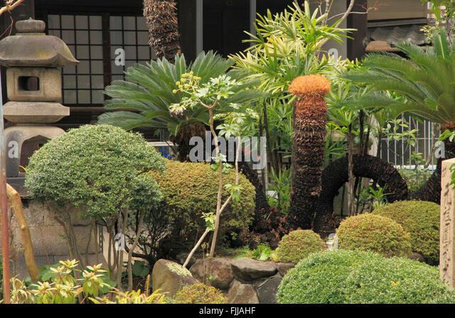 Japan, Osaka, garden, - Stock Image