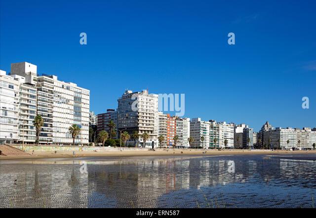 Seaside apartment blocks Playa de los Pocitos Montevideo Uruguay - Stock Image
