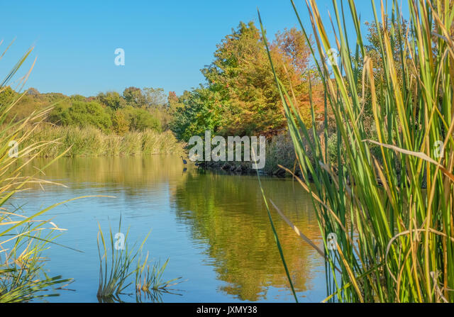 The small lake in Blount Cultural Park, Montgomery, Alabama, at the early start of the autumn (fall) season. - Stock Image