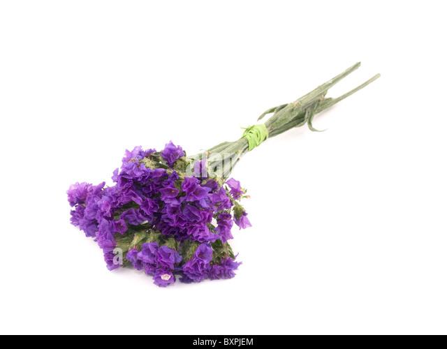Purple Bouquet Stock Photos & Purple Bouquet Stock Images - Alamy