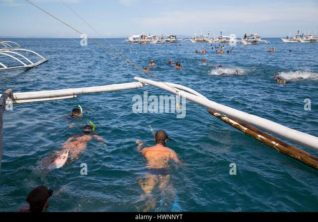 Philippines, Luzon, Sorsogon Province, Donsol, tourists swimming with whale shark - Stock-Bilder