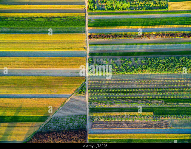 Zhaoyuan, China. 8th Aug, 2017. Zhaoyuan, CHINA-August 7 2017: (EDITORIAL USE ONLY. CHINA OUT) Aerial photography - Stock Image