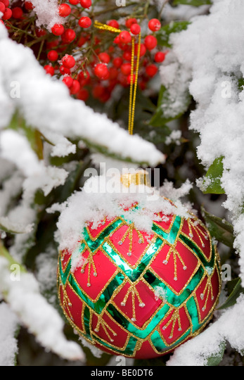 Christmas tree ornament in snow covered bush with red berries. - Stock Image