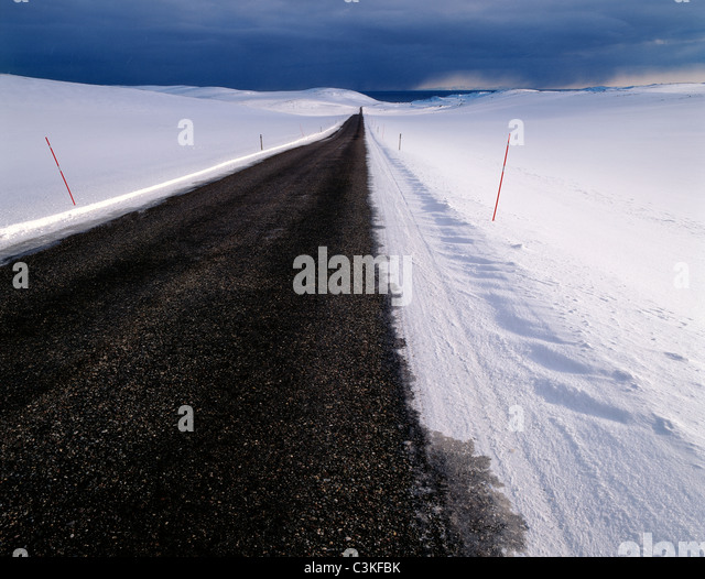 Empty road into wilderness - Stock Image