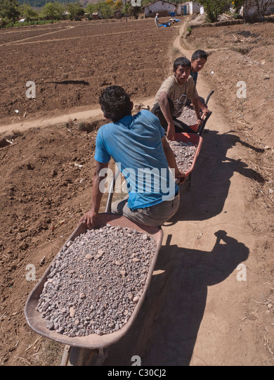 Three young adult male workers haul wheelbarrows full of crushed rock for construction of a new house in Guatemala. - Stock Image