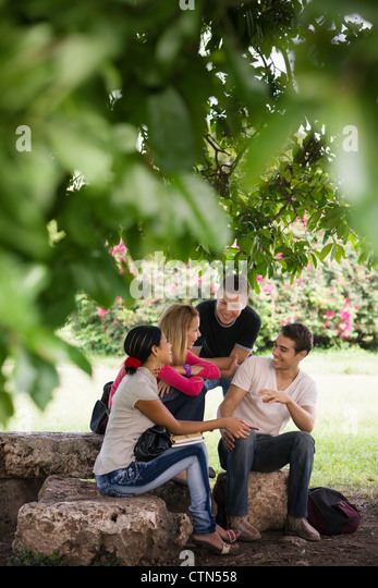 People and education, college students meeting and doing homework together in park - Stock Image