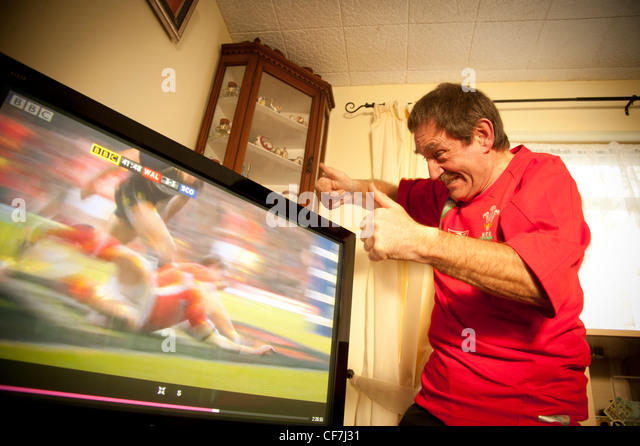 BRIAN JONES, Aberystwyth, a YouTube sensation after a video of him swearing while watching the Wales play rugby - Stock Image
