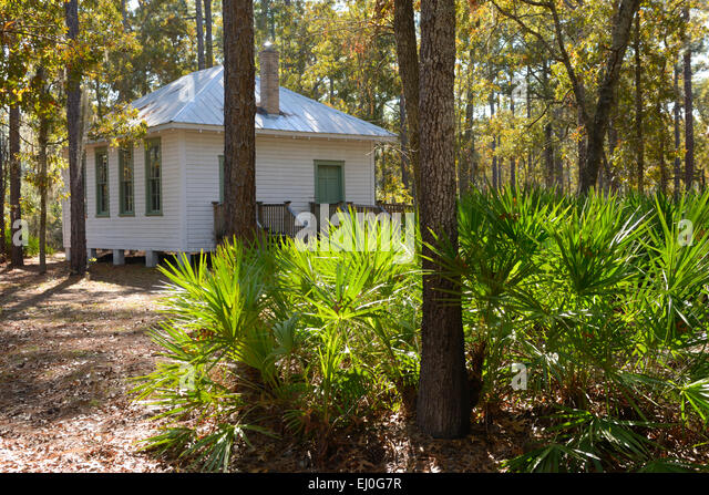 Kanapaha stock photos kanapaha stock images alamy - Botanical gardens gainesville fl ...