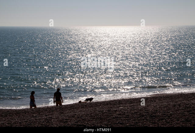 A couple walk their two sheep dogs on a beach at sunset - Stock Image