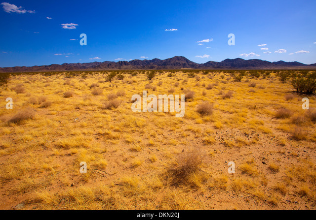 mohave valley hindu singles Hindu single women in hardyville sex dating with pretty individuals  foreign  born residents in mohave county, arizona mohave county: hardyville pioneer.