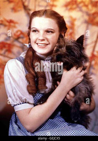 Judy Garland als Dorothy mit Hund *** Local Caption *** 1939, 1930er, 1930s, Film, Hund, Wizard Of Oz, The, dog, - Stock Image