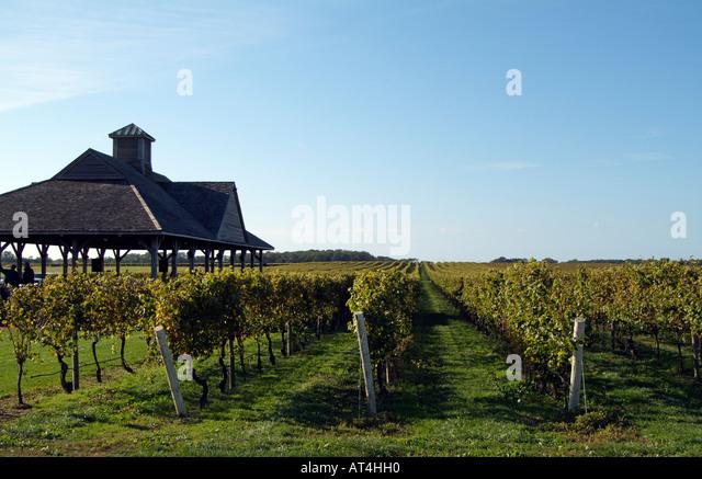 Pindar Winery In Long Island