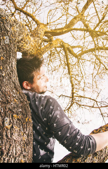 Young man lying on the top of a tree - Stock Image
