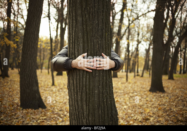 tree and hands of man ,special toned photo f/x, selective focus on hands - Stock Image