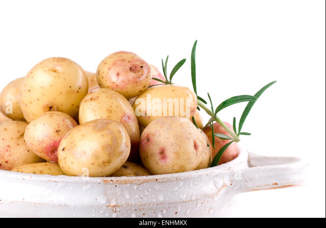 Uncooked rinsed potatoes with a rosemary branch in a ceramic colander. - Stock Image
