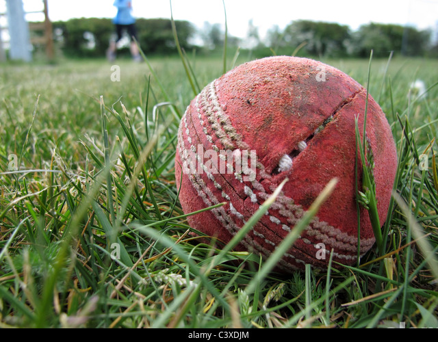 cricket ball in long grass - Stock Image