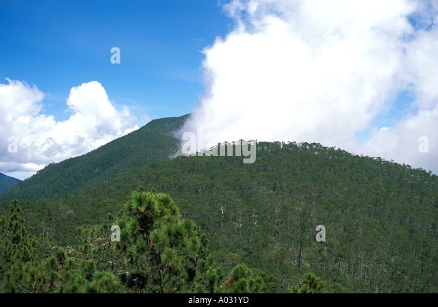 Dominican Republic Bermudez National Park - Stock Image