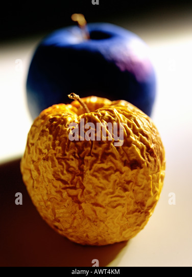 One wrinkled Golden Delicious apple and a blue apple - Stock Image