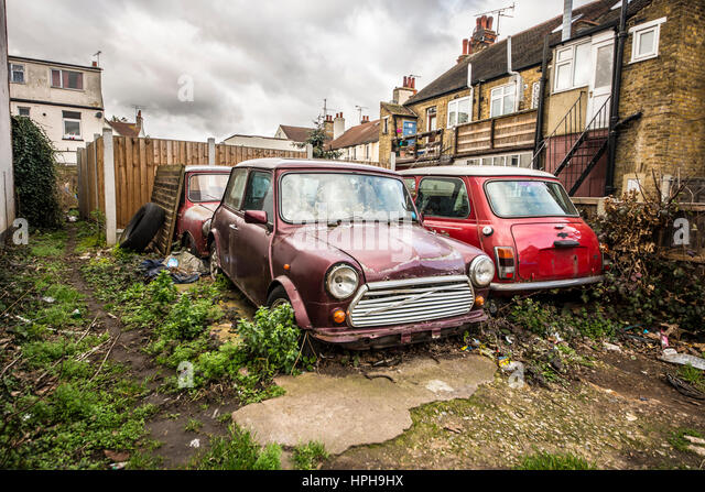 A group of four abandoned British Leyland Minis left to deteriorate on an overgrown parking lot - Stock Image