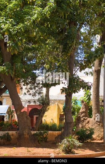 Casablanca, Morocco, Africa - Stock Image