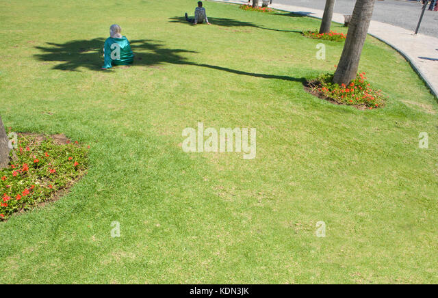 People resting over park grass under the tree shadows at noon, Tangier, Morocco - Stock Image