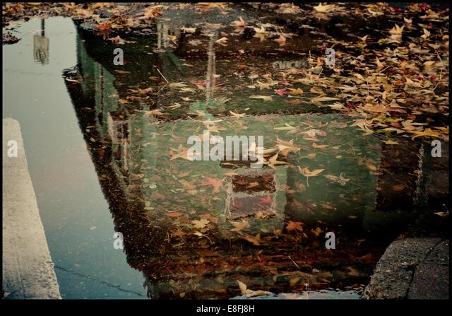 USA, Oregon, Portland, Close-up of puddle - Stock-Bilder