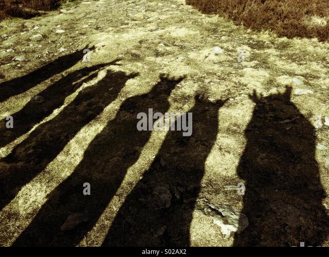 People shadows - Stock Image