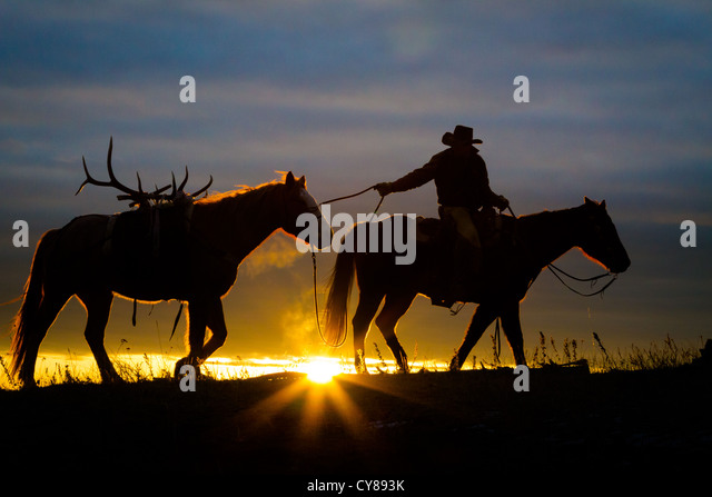 Cowboy and his horse at sunrise on a ranch in northweastern Wyoming - Stock Image