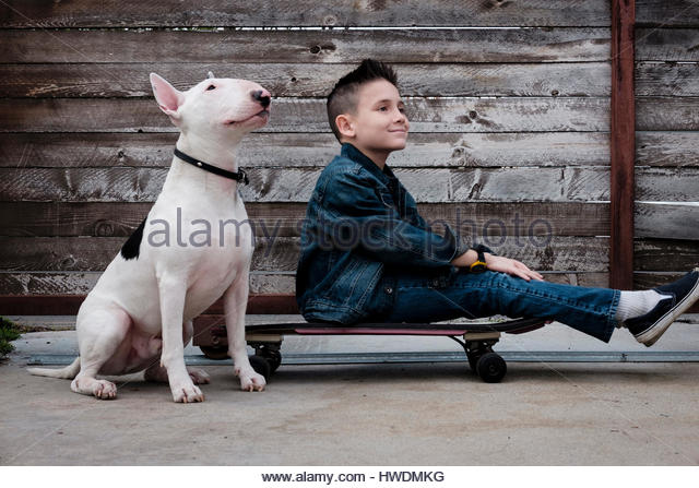 Boy sitting on skateboard beside pet dog - Stock-Bilder