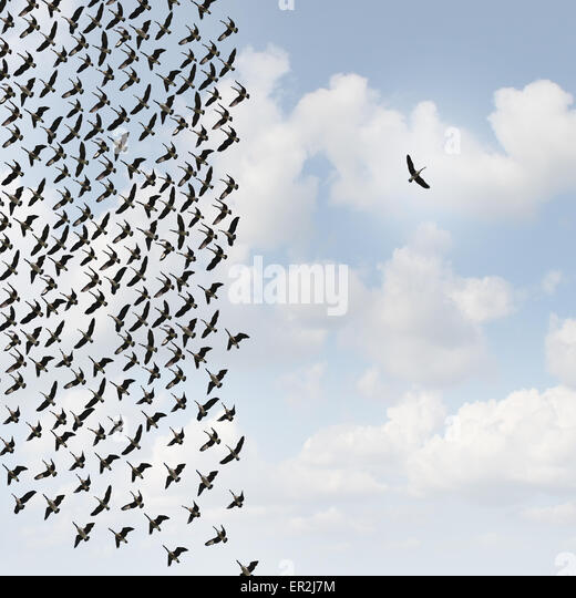 Independent thinker concept and new leadership concept or individuality as a group of flying geese with one individual - Stock Image