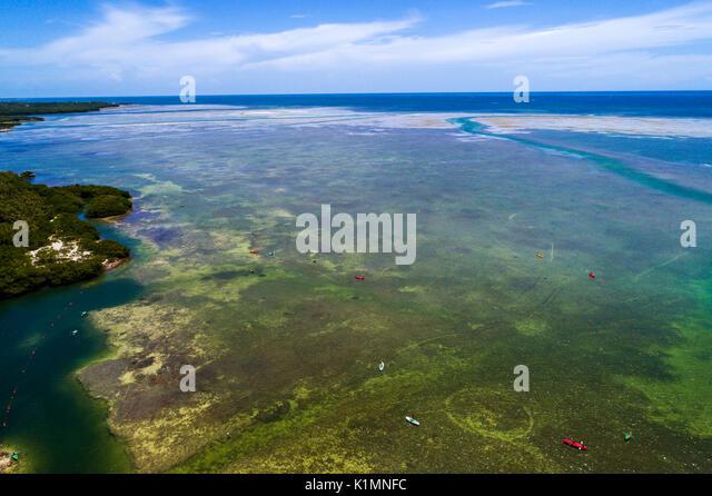 Florida Florida Keys Upper Islamorada Whale Harbor Atlantic Ocean Windley Key aerial overhead view above bird's - Stock Image