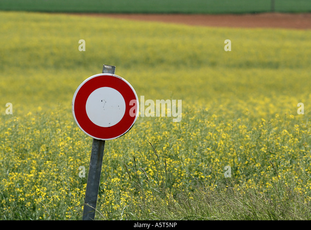 Do not enter sign and field of colza - Stock Image