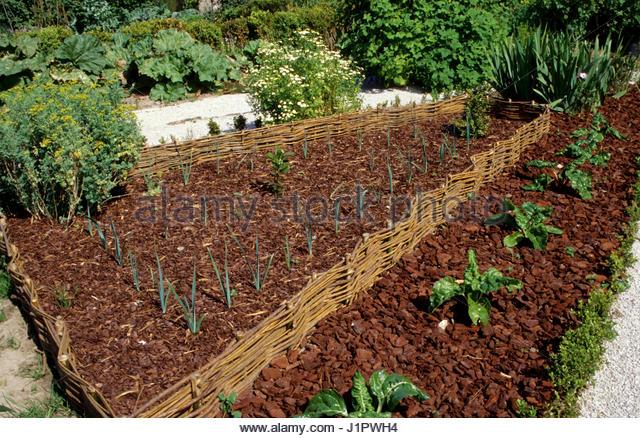 Wood chips vegetable garden wood chips for Wood chip mulch vegetable garden