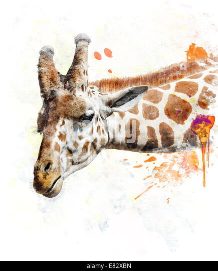 Watercolor Digital Painting Of Giraffe - Stock-Bilder