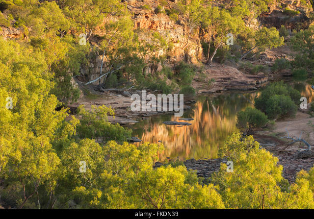 the Murchison River gorge at the Ross Graham lookout, Kalbarri National Park, Western Australia - Stock Image