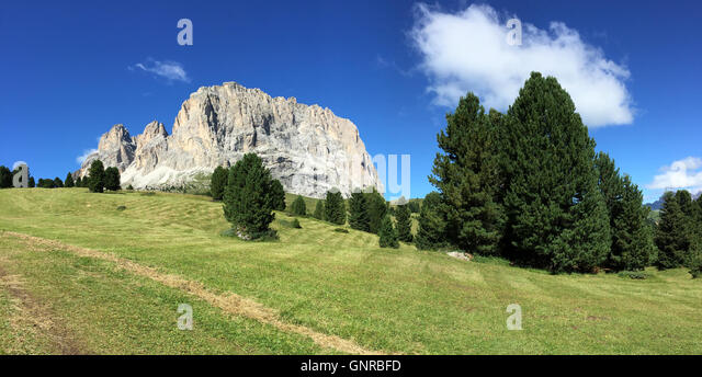 Landscapes of the Dolomites in a sunny summer day with meadow and trees, Italy - Stock Image