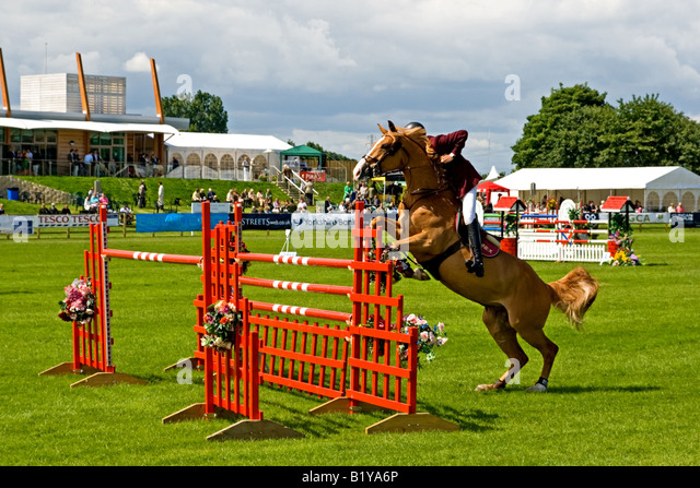 Lincolnshire Show 2008 Show Jumping - Stock Image
