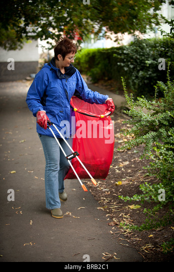 Adult woman volunteer collecting litter in a park, Aberystwyth Wales UK - Stock Image