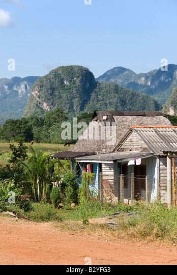 Traditional wooden houses with steep limestone mogotes in the distance in the Viñales valley Cuba - Stock Image