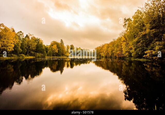 Autumn pond - Stock Image