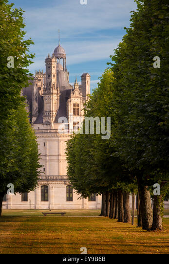 Early morning over Chateau Chambord, Loire-et-Cher, Centre, France - Stock Image