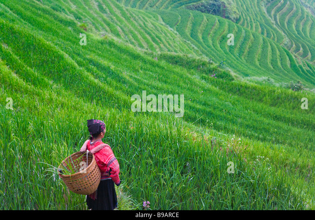 Red Yao girl with rice terraces Guangxi Province China - Stock Image