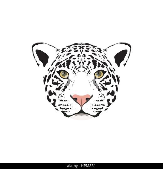Panther Logo Stock Photos & Panther Logo Stock Images - Alamy