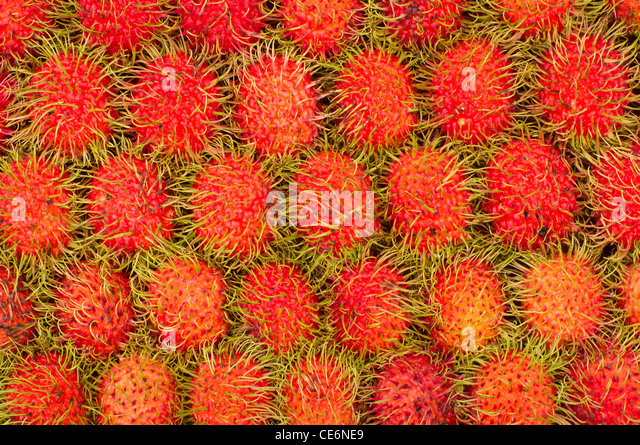 rambutan fruits, one of the common fruits found in asia countries. Rambutans were arranged in a grid uniform patterns - Stock Image