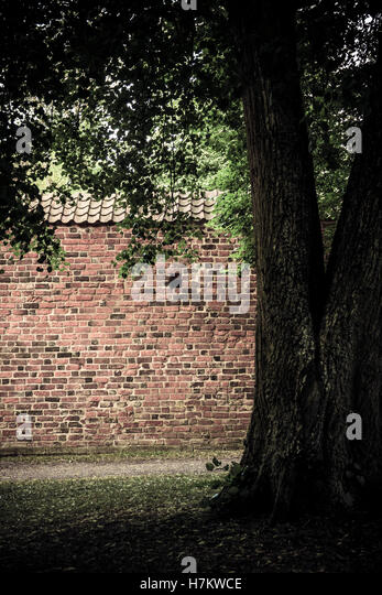 Red brick wall and old tree in empty park. Tranquil and calm architecture background. - Stock-Bilder