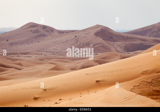 Desert landscape of Arabian peninsula - Stock Image